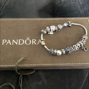 Pandora charms bracelets and tie necklaces